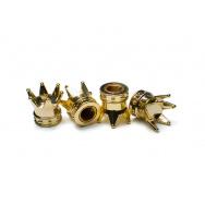 Čepičky ventilků - zlaté korunky